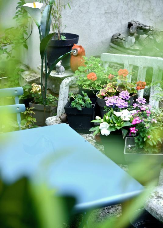 jardin de laurence